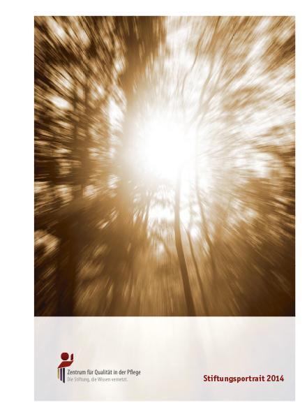 Titelblatt Stiftungsportrait 2014 mit Lichtstrahl durch Bäume